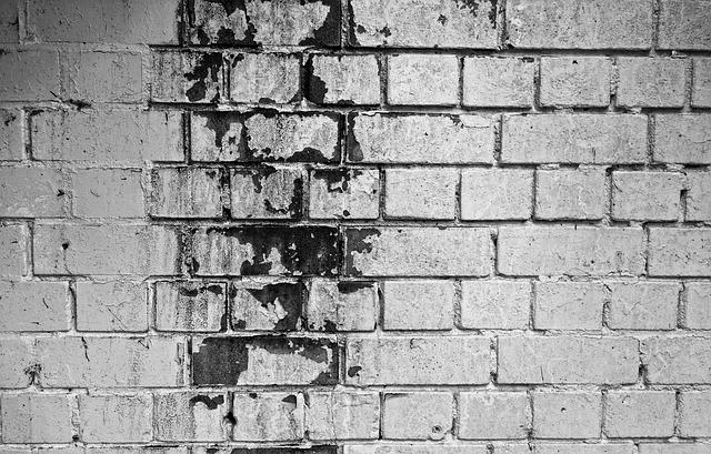 cihlová zeď s plísní